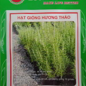 hat giong cay huong thao